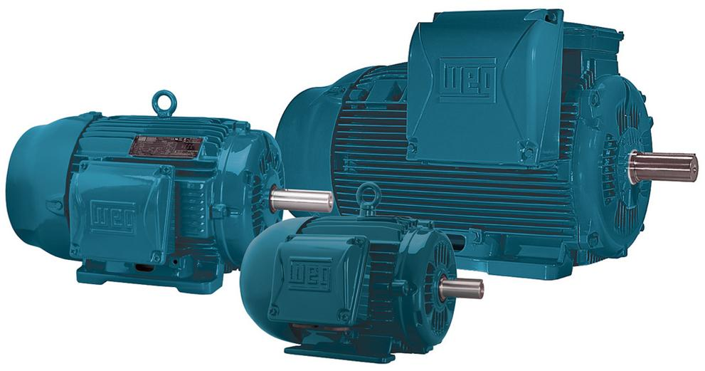 Ac And Dc Electric Motors Bk Power Systems